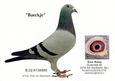 Baeckje
