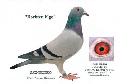 Dochter Figo