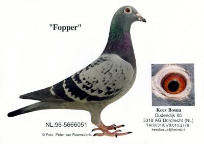 Fopper