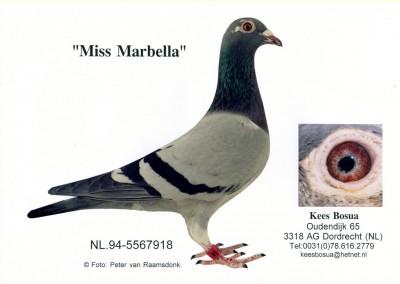 Miss Marbella