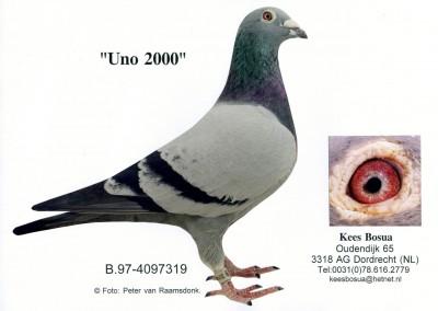 Uno 2000