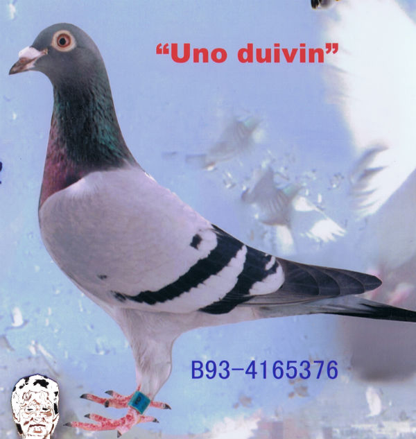 UNODUIVIN