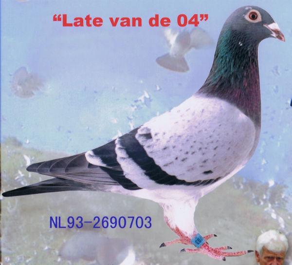 LATE VAN DE 04