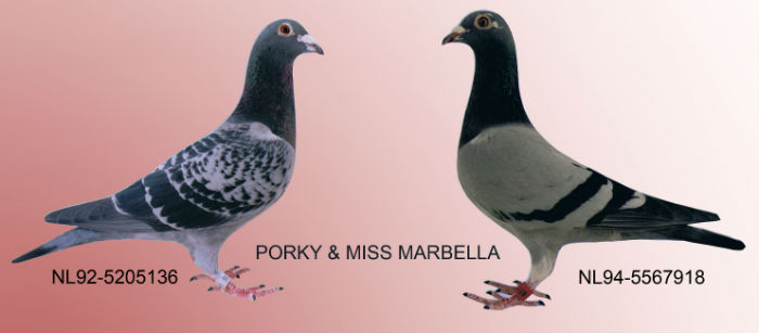 Porky en Miss Marbella