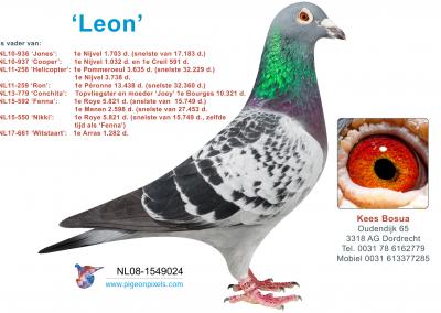 lEON-2-1